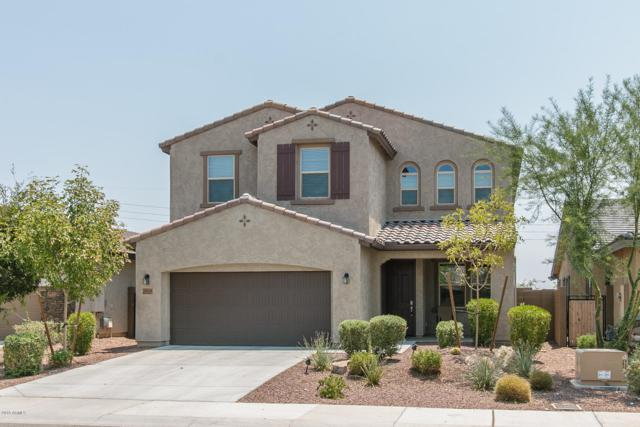 9929 W Via Del Sol, Peoria, AZ 85383 (MLS #5801016) :: Arizona 1 Real Estate Team