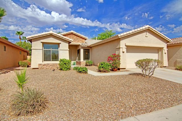 25030 S Mohawk Drive, Sun Lakes, AZ 85248 (MLS #5801237) :: CC & Co. Real Estate Team