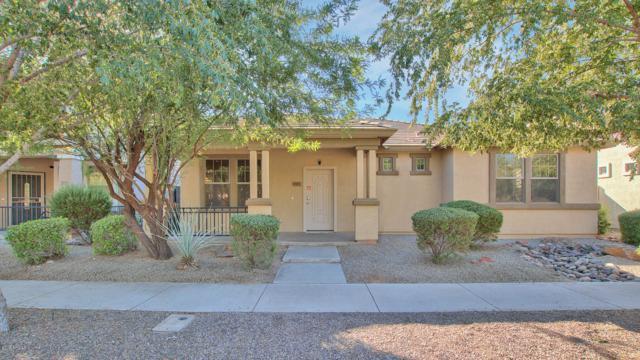 3281 E Ivanhoe Street, Gilbert, AZ 85295 (MLS #5801700) :: Lux Home Group at  Keller Williams Realty Phoenix