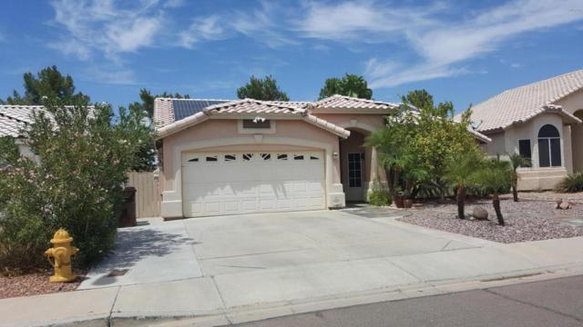 8558 W Charleston Avenue, Peoria, AZ 85382 (MLS #5801821) :: Occasio Realty