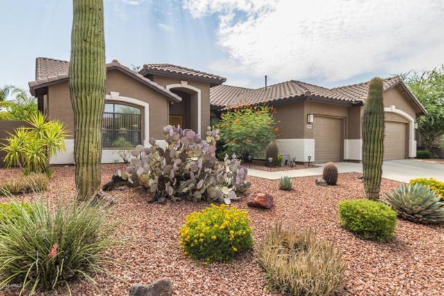 26803 N 45TH Place, Cave Creek, AZ 85331 (MLS #5801889) :: CC & Co. Real Estate Team