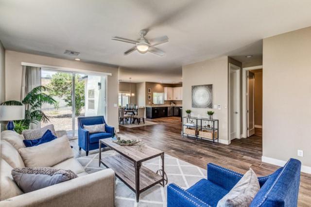 3638 E Earll Drive, Phoenix, AZ 85018 (MLS #5801967) :: CC & Co. Real Estate Team