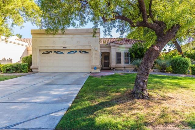 19420 N Westbrook Parkway #521, Peoria, AZ 85382 (MLS #5802099) :: The Daniel Montez Real Estate Group