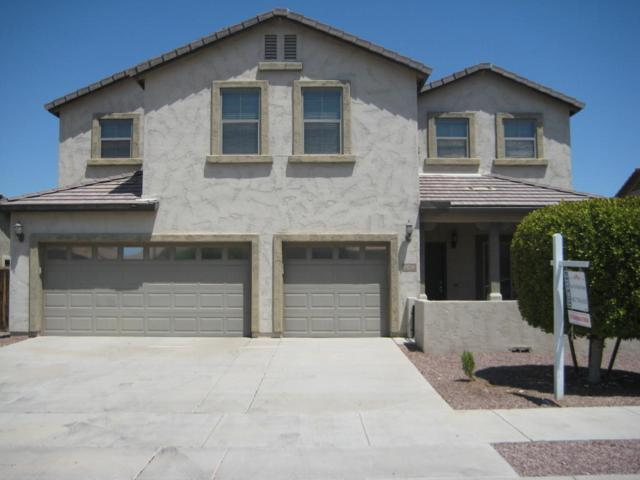 16758 W Mohave Street, Goodyear, AZ 85338 (MLS #5802465) :: The Everest Team at My Home Group