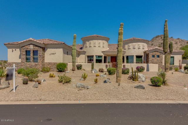 11429 S Wilson Lane, Goodyear, AZ 85338 (MLS #5802769) :: Brett Tanner Home Selling Team