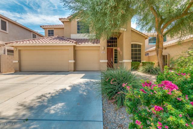 1227 W Deoni Trail, San Tan Valley, AZ 85143 (MLS #5803077) :: Yost Realty Group at RE/MAX Casa Grande