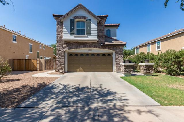 4040 E Gail Court, Gilbert, AZ 85296 (MLS #5803542) :: The Property Partners at eXp Realty