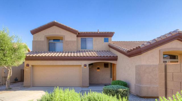 893 E Sheffield Avenue, Chandler, AZ 85225 (MLS #5804099) :: The Garcia Group @ My Home Group