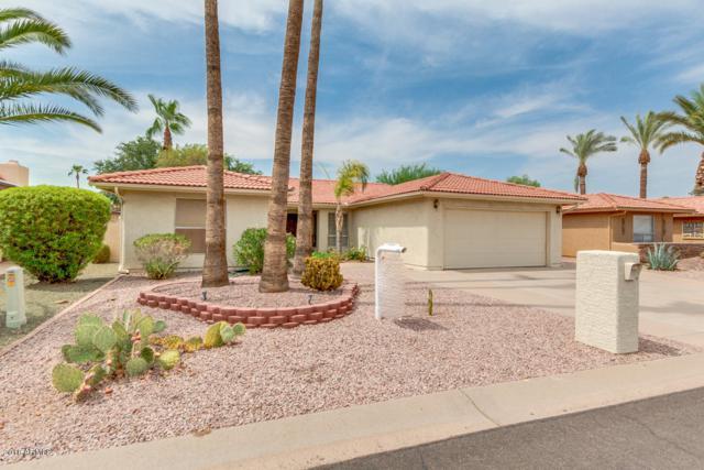 25826 S New Town Drive, Sun Lakes, AZ 85248 (MLS #5804240) :: Gilbert Arizona Realty