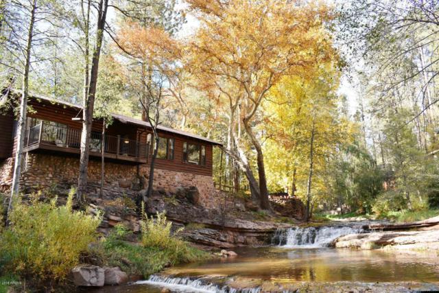 298 E Saddle Mountain Road, Kohls Ranch, AZ 85541 (MLS #5805273) :: CC & Co. Real Estate Team