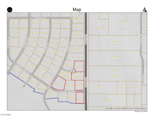 0 W Bay Circle, Tonopah, AZ 85354 (MLS #5805414) :: Brett Tanner Home Selling Team
