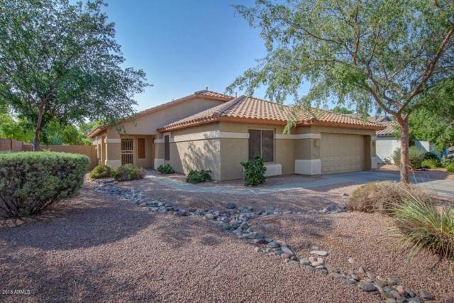 10339 E Idaho Avenue, Mesa, AZ 85209 (MLS #5806307) :: Occasio Realty