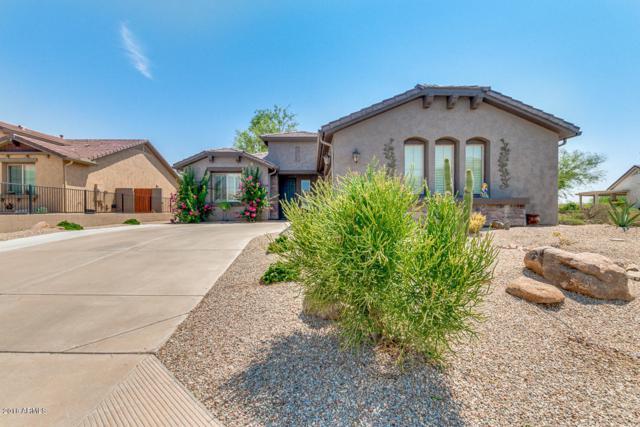 1153 W Desert Aster Road, San Tan Valley, AZ 85143 (MLS #5806380) :: The Pete Dijkstra Team