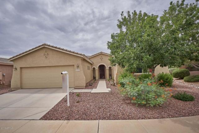 43001 W Morning Dove Lane, Maricopa, AZ 85138 (MLS #5806544) :: Sibbach Team - Realty One Group