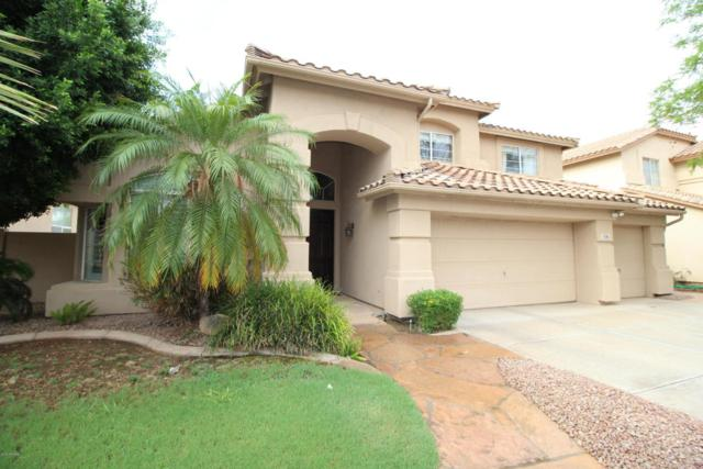 5041 W Laredo Street, Chandler, AZ 85226 (MLS #5806723) :: Power Realty Group Model Home Center