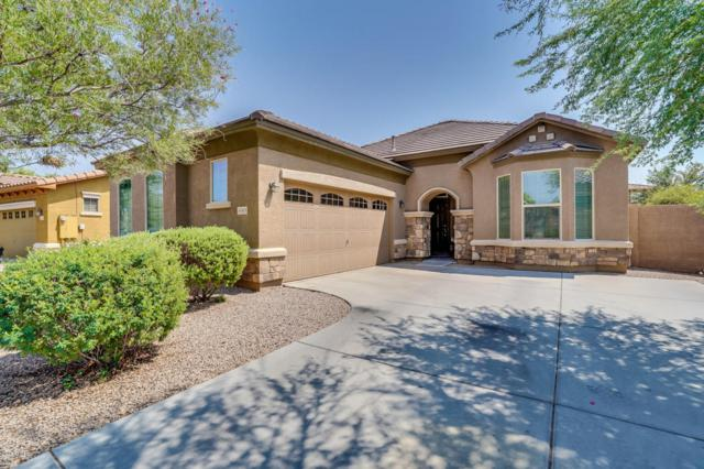 3065 E Ridgewood Lane, Gilbert, AZ 85298 (MLS #5806810) :: The Pete Dijkstra Team