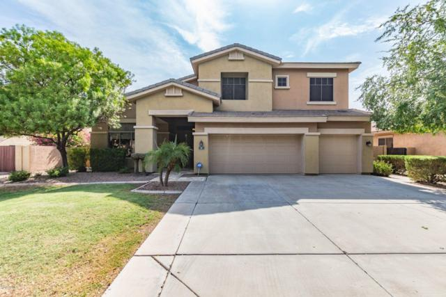 87 S Presidio Drive, Gilbert, AZ 85233 (MLS #5807014) :: Gilbert Arizona Realty
