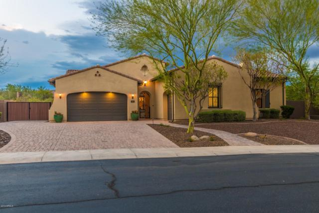 6752 W Lucia Drive, Peoria, AZ 85383 (MLS #5807040) :: Kortright Group - West USA Realty