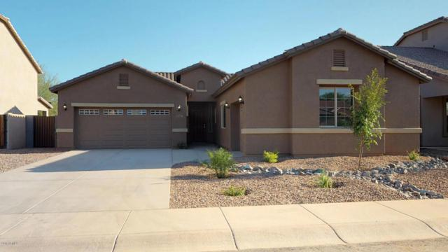 1576 E Jardin Place, Casa Grande, AZ 85122 (MLS #5807409) :: The Wehner Group