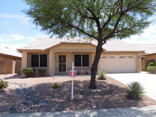 20509 N 107TH Drive, Sun City, AZ 85373 (MLS #5807666) :: The Worth Group