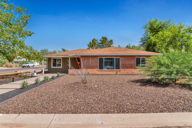 2902 E Avalon Drive, Phoenix, AZ 85016 (MLS #5808004) :: The Laughton Team