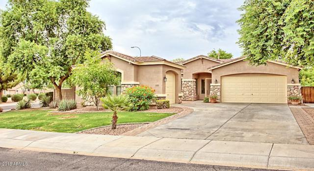 525 E Coconino Drive, Chandler, AZ 85249 (MLS #5808014) :: Realty Executives