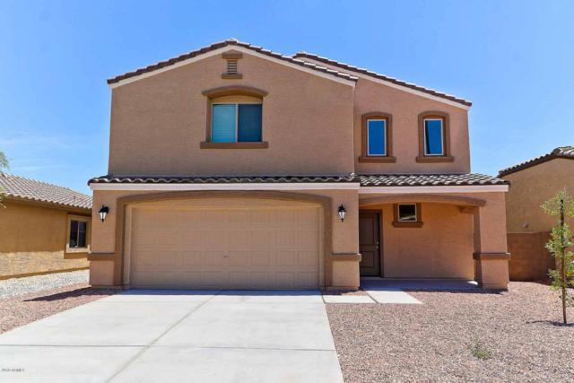 8642 S 253RD Avenue, Buckeye, AZ 85326 (MLS #5808066) :: The Results Group