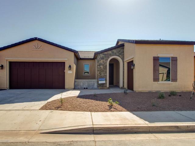 42175 W Cribbage Road, Maricopa, AZ 85138 (MLS #5808184) :: Gilbert Arizona Realty