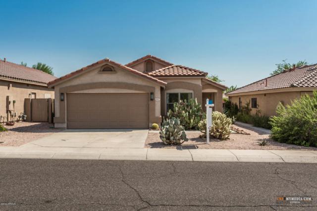 5127 E Roy Rogers Road, Cave Creek, AZ 85331 (MLS #5808195) :: The Garcia Group
