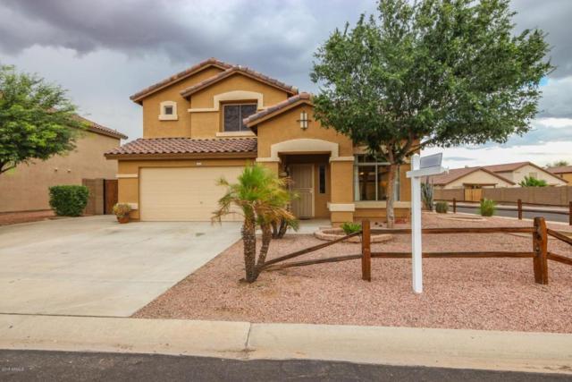 15922 W Cottonwood Street, Surprise, AZ 85374 (MLS #5808355) :: Occasio Realty