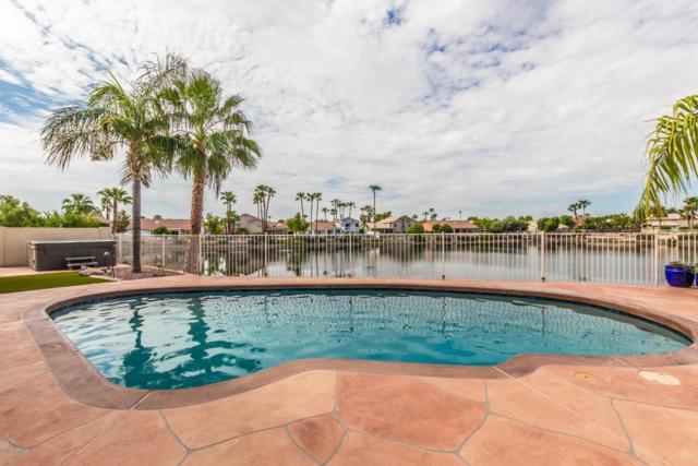 18886 N 71ST Lane, Glendale, AZ 85308 (MLS #5808518) :: Gilbert Arizona Realty