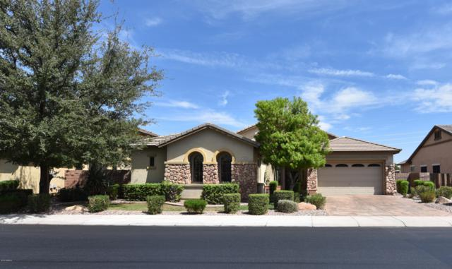 1640 E Yellowstone Place, Chandler, AZ 85249 (MLS #5808633) :: Conway Real Estate