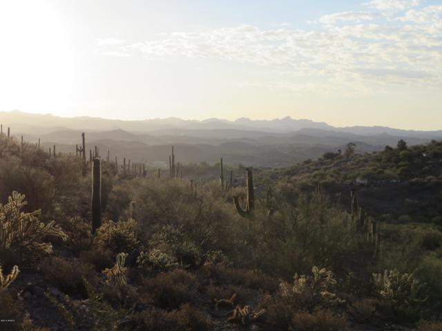 11xx S Kellis Road, Wickenburg, AZ 85390 (MLS #5808816) :: Brett Tanner Home Selling Team