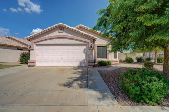 21817 N 34TH Avenue, Phoenix, AZ 85027 (MLS #5809109) :: The Everest Team at My Home Group