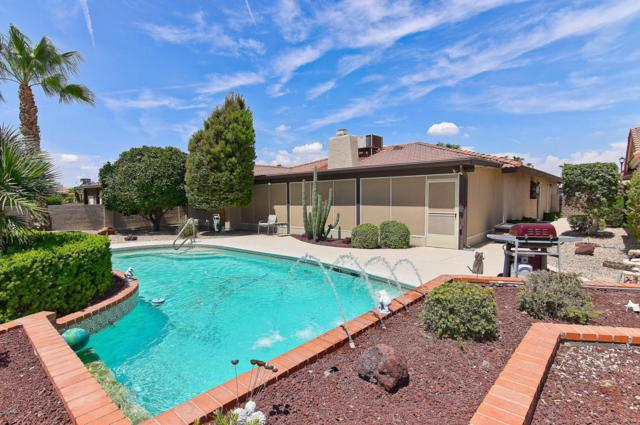 10425 E Chestnut Drive, Sun Lakes, AZ 85248 (MLS #5809475) :: Yost Realty Group at RE/MAX Casa Grande