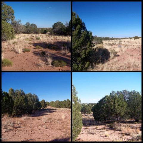 37 acre N Noll Road, Concho, AZ 85924 (MLS #5809544) :: NextView Home Professionals, Brokered by eXp Realty