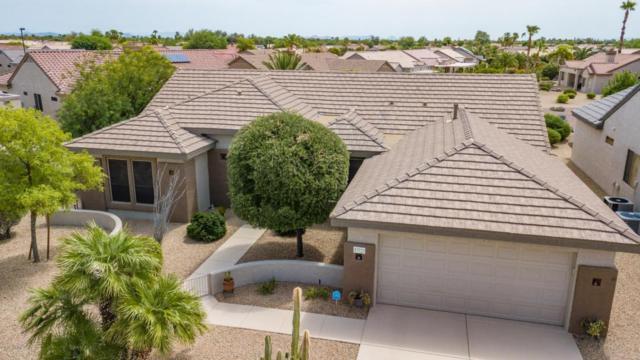 17723 N Stone Haven Drive, Surprise, AZ 85374 (MLS #5809610) :: Gilbert Arizona Realty