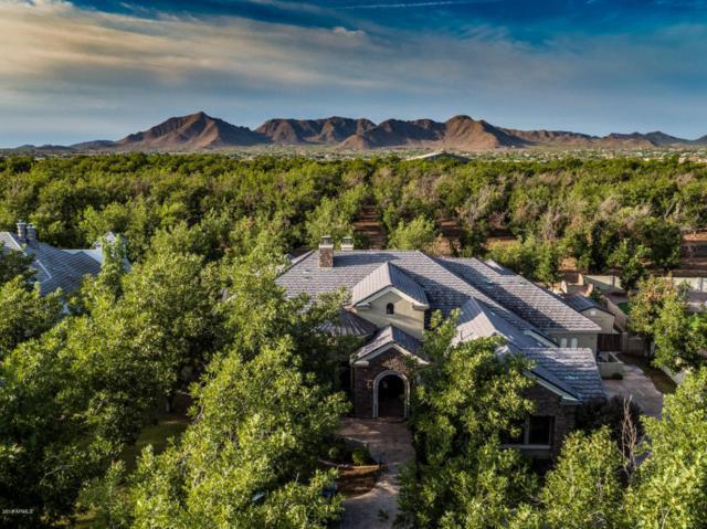 20445 E Sunset Court, Queen Creek, AZ 85142 (MLS #5809810) :: Conway Real Estate