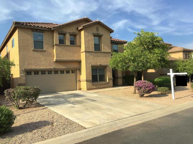 4546 E Shapinsay Drive, San Tan Valley, AZ 85140 (MLS #5809821) :: The Garcia Group @ My Home Group