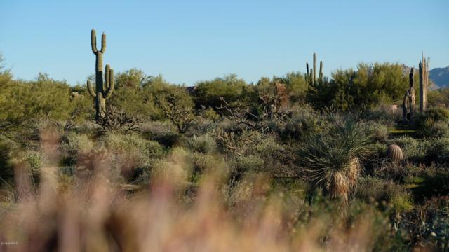 8423 E Whisper Rock Trail, Scottsdale, AZ 85266 (MLS #5809909) :: Brett Tanner Home Selling Team