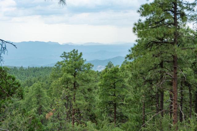 4700 Copper Basin (Approx) Road, Prescott, AZ 86303 (MLS #5810174) :: The Garcia Group @ My Home Group