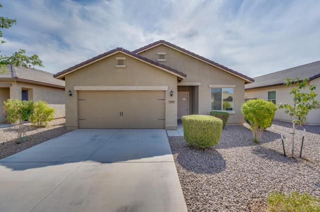 30069 N Oak Drive, Florence, AZ 85132 (MLS #5810332) :: Lifestyle Partners Team