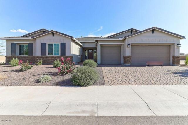 13755 W Bloomington Street, Litchfield Park, AZ 85340 (MLS #5810369) :: Occasio Realty