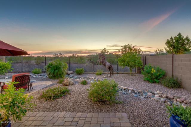30688 N 138TH Avenue, Peoria, AZ 85383 (MLS #5811319) :: Occasio Realty