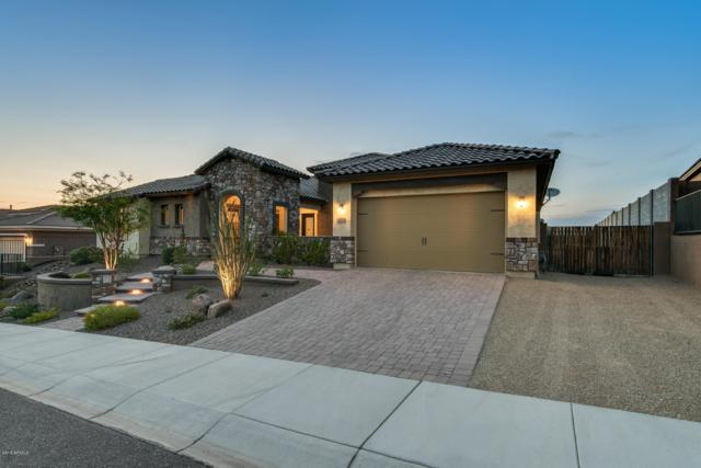 10046 W White Feather Lane, Peoria, AZ 85383 (MLS #5811497) :: The Property Partners at eXp Realty