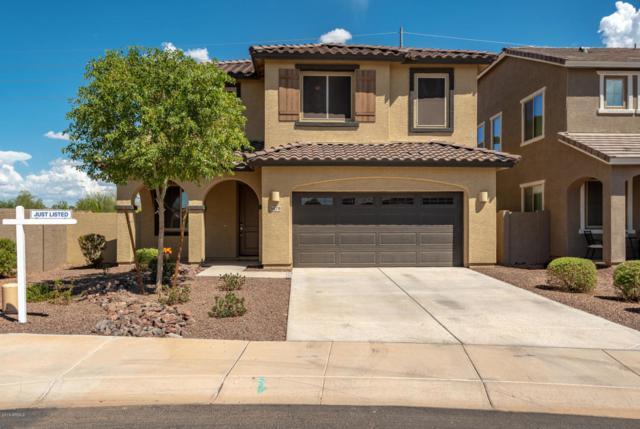 5479 S Joshua Tree Lane, Gilbert, AZ 85298 (MLS #5811824) :: Occasio Realty