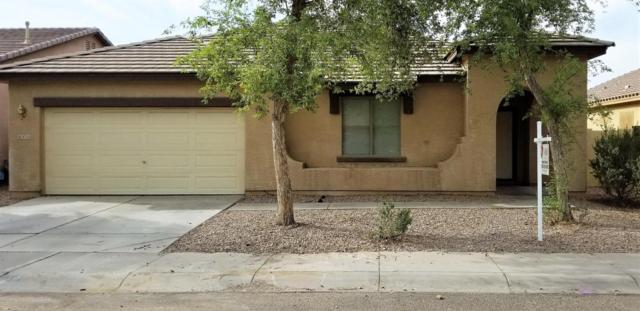 8733 W Hammond Lane, Tolleson, AZ 85353 (MLS #5812078) :: Occasio Realty