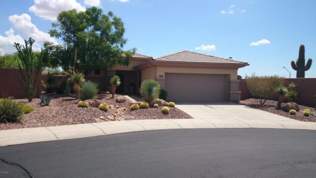 2383 W Turtle Hill Court, Phoenix, AZ 85086 (MLS #5812284) :: The W Group