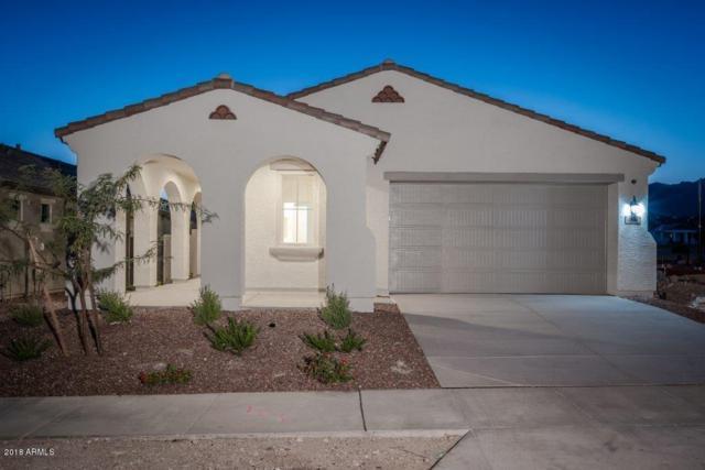 20648 W College Drive, Buckeye, AZ 85396 (MLS #5812480) :: The Results Group