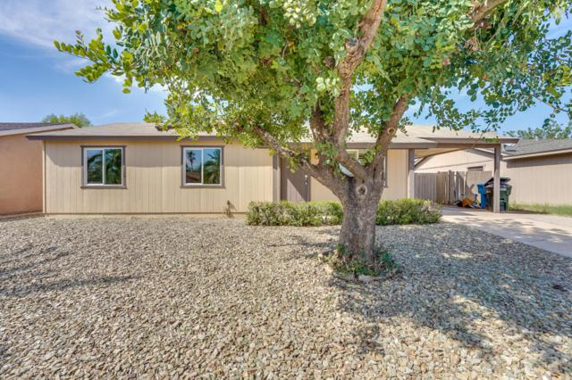 3826 E Sweetwater Avenue, Phoenix, AZ 85032 (MLS #5812530) :: The Garcia Group @ My Home Group